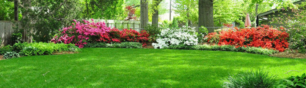 All Service Lawn & Landscape, Inc.